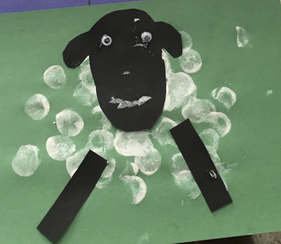 Differentiated Craft – Sheep